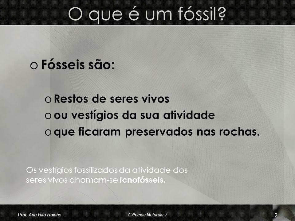 O que é um fóssil Fósseis são: Restos de seres vivos
