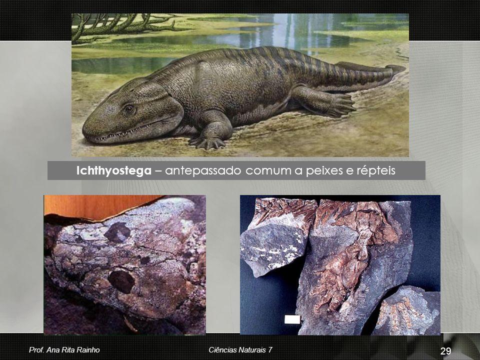 Ichthyostega – antepassado comum a peixes e répteis