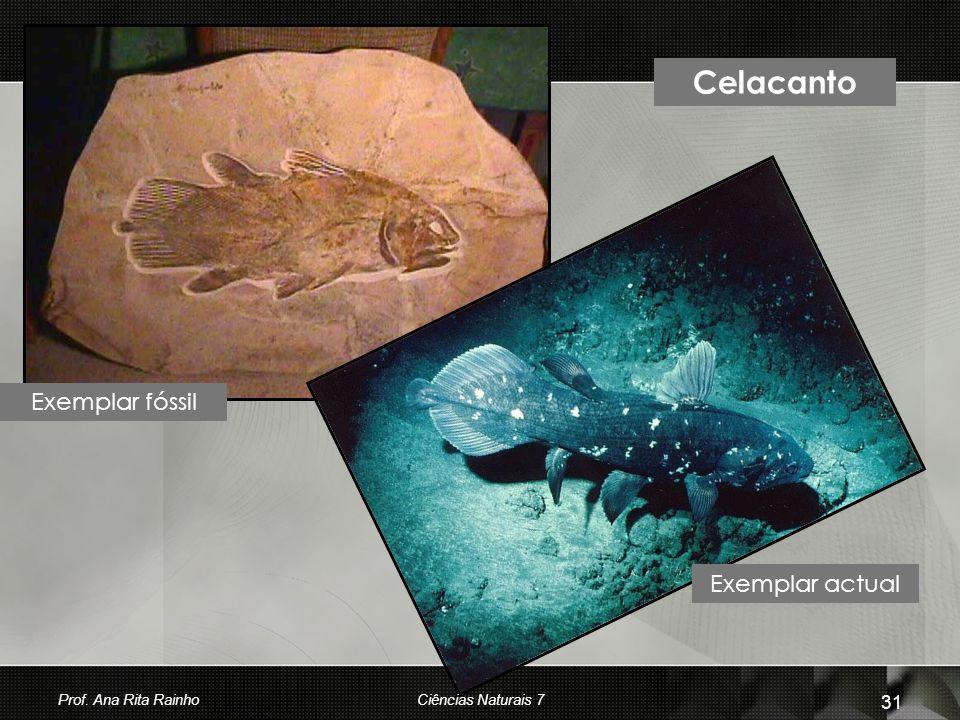 Celacanto Exemplar fóssil Exemplar actual