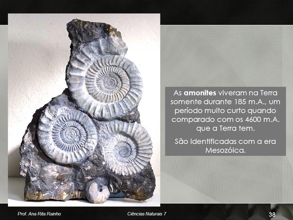 São identificadas com a era Mesozóica.