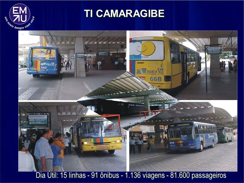 Dia Útil: 15 linhas - 91 ônibus - 1.136 viagens - 81.600 passageiros