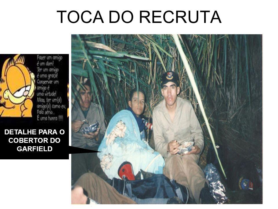 DETALHE PARA O COBERTOR DO GARFIELD