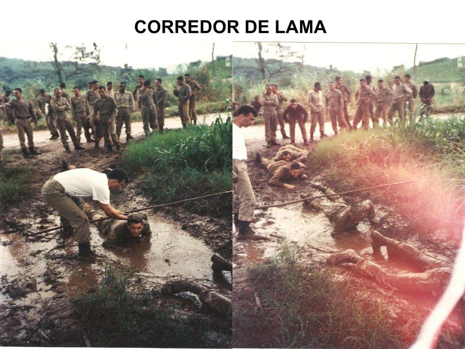 CORREDOR DE LAMA
