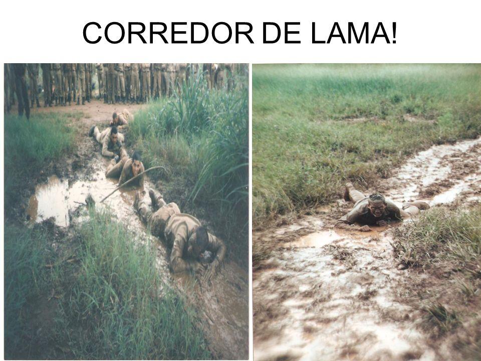 CORREDOR DE LAMA!