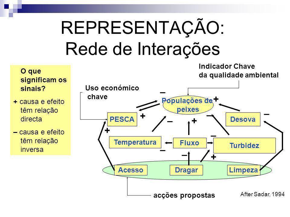 REPRESENTAÇÃO: Rede de Interações