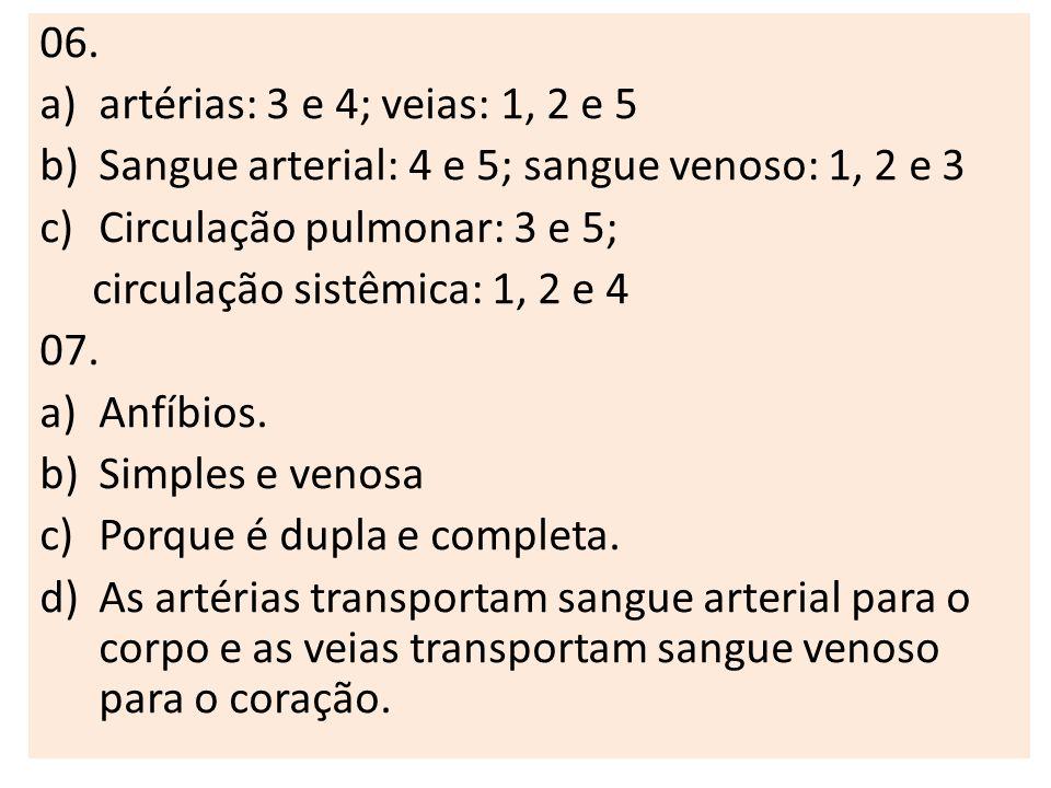 06. artérias: 3 e 4; veias: 1, 2 e 5. Sangue arterial: 4 e 5; sangue venoso: 1, 2 e 3. Circulação pulmonar: 3 e 5;
