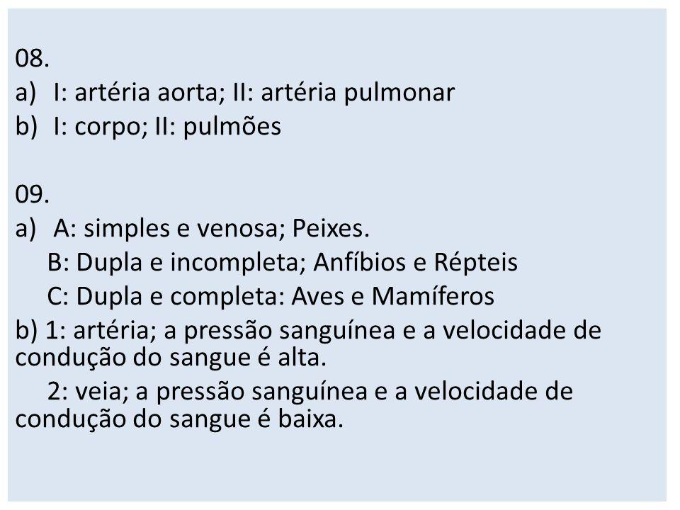 08. I: artéria aorta; II: artéria pulmonar. I: corpo; II: pulmões. 09. A: simples e venosa; Peixes.