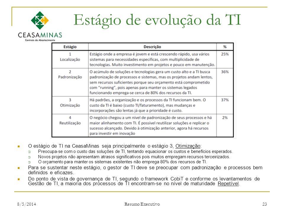 Estágio de evolução da TI