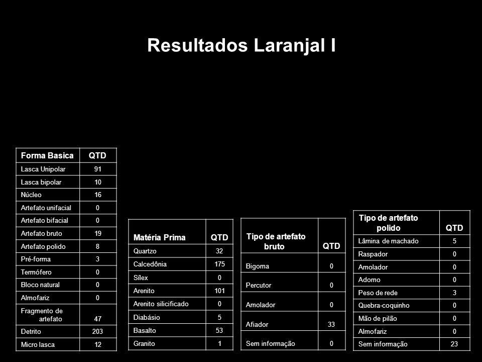 Resultados Laranjal I Forma Basica QTD Tipo de artefato polido QTD