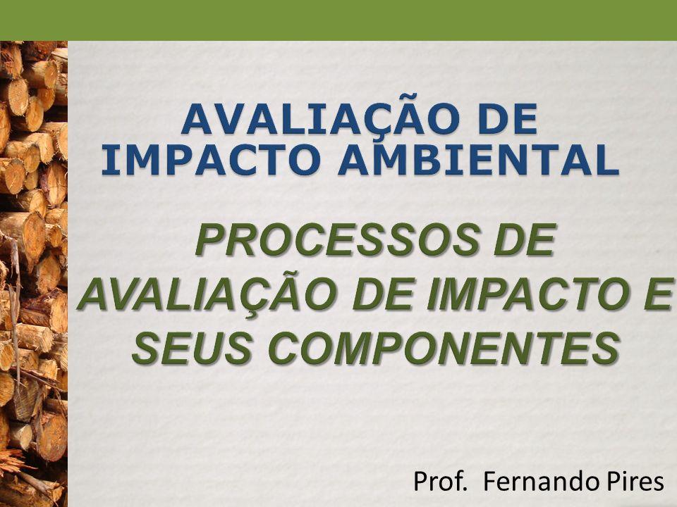 PROCESSOS DE AVALIAÇÃO DE IMPACTO E SEUS COMPONENTES