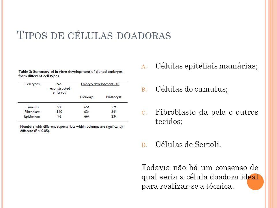 Tipos de células doadoras
