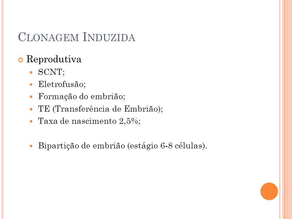 Clonagem Induzida Reprodutiva SCNT; Eletrofusão; Formação do embrião;