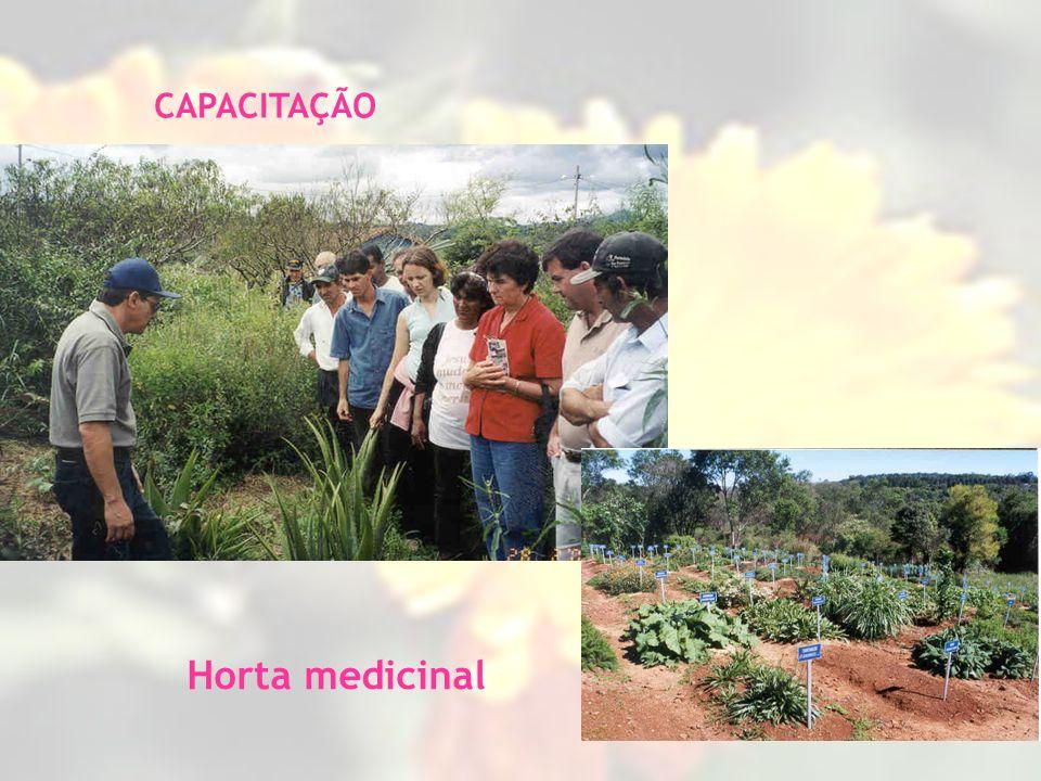 CAPACITAÇÃO Horta medicinal