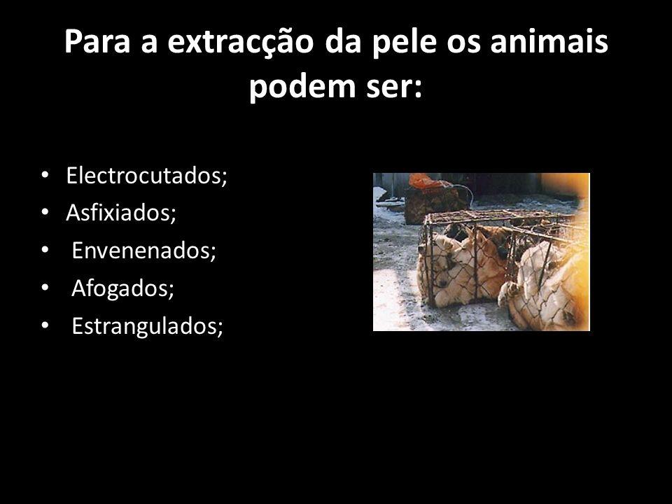 Para a extracção da pele os animais podem ser: