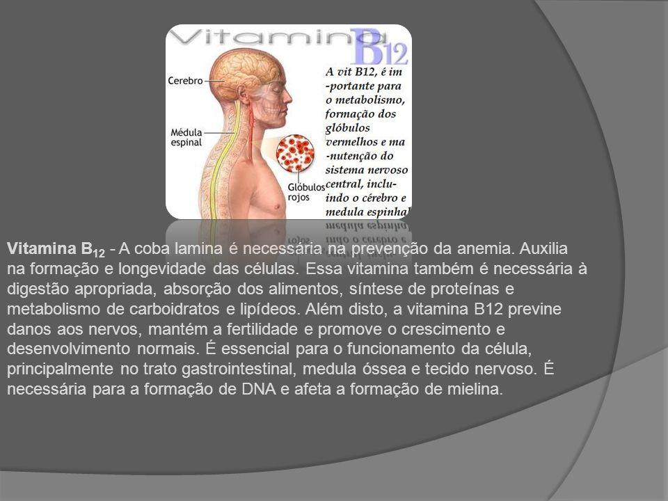 Vitamina B12 - A coba lamina é necessária na prevenção da anemia
