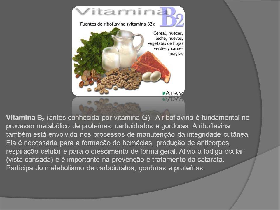 Vitamina B2 (antes conhecida por vitamina G) - A riboflavina é fundamental no processo metabólico de proteínas, carboidratos e gorduras.