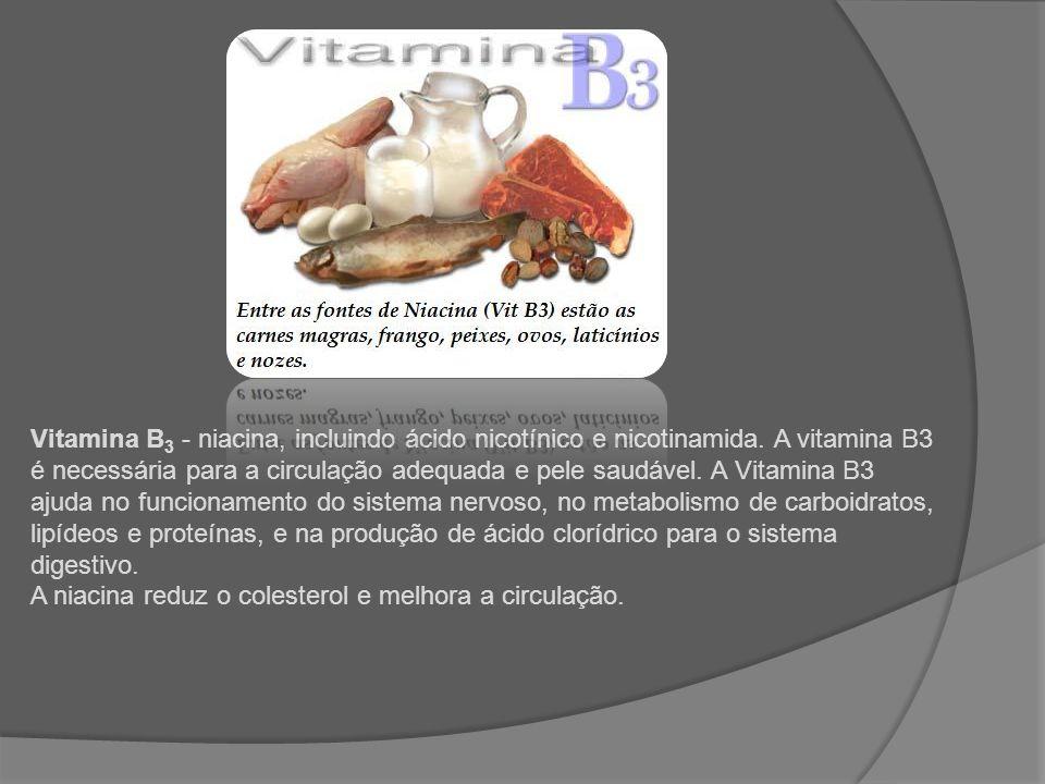 Vitamina B3 - niacina, incluindo ácido nicotínico e nicotinamida