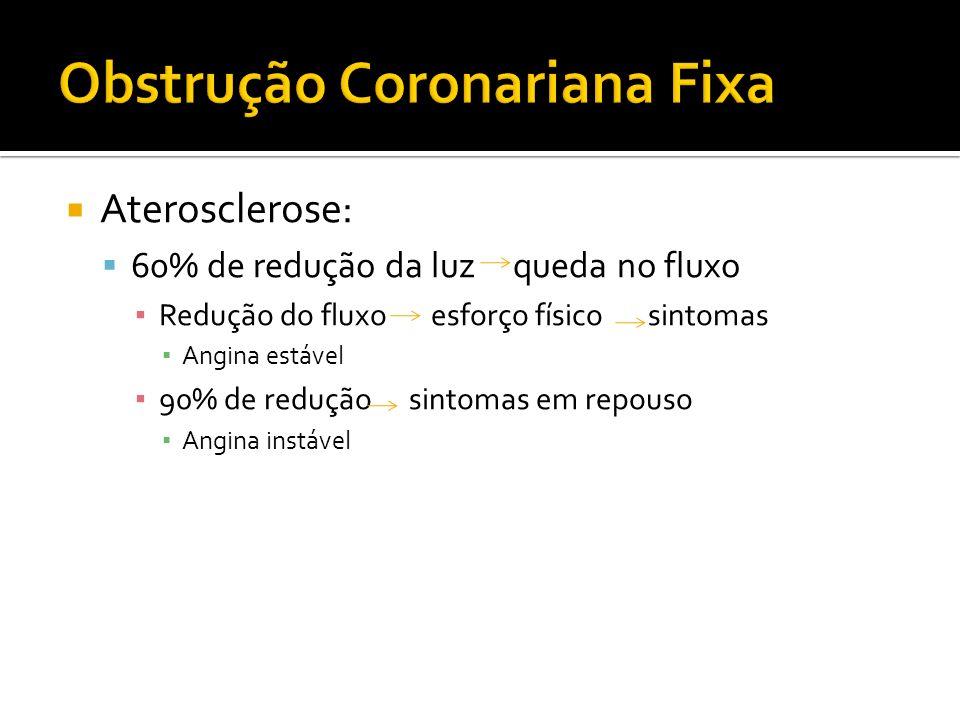 Obstrução Coronariana Fixa