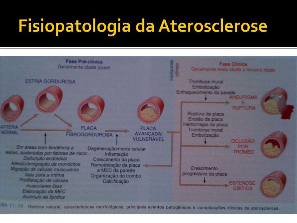 Fisiopatologia da Aterosclerose