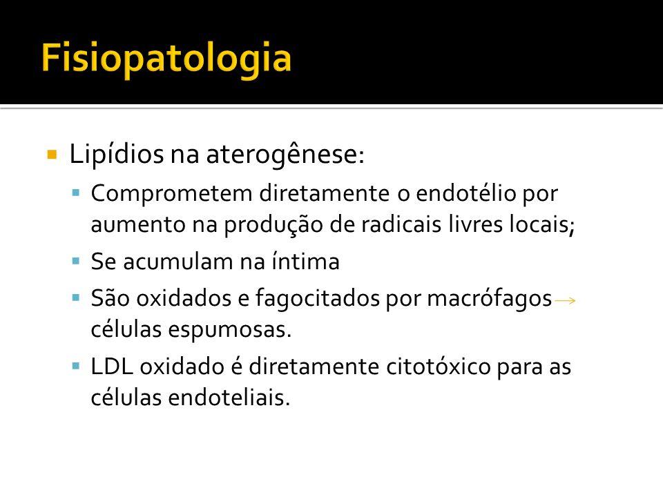 Fisiopatologia Lipídios na aterogênese: