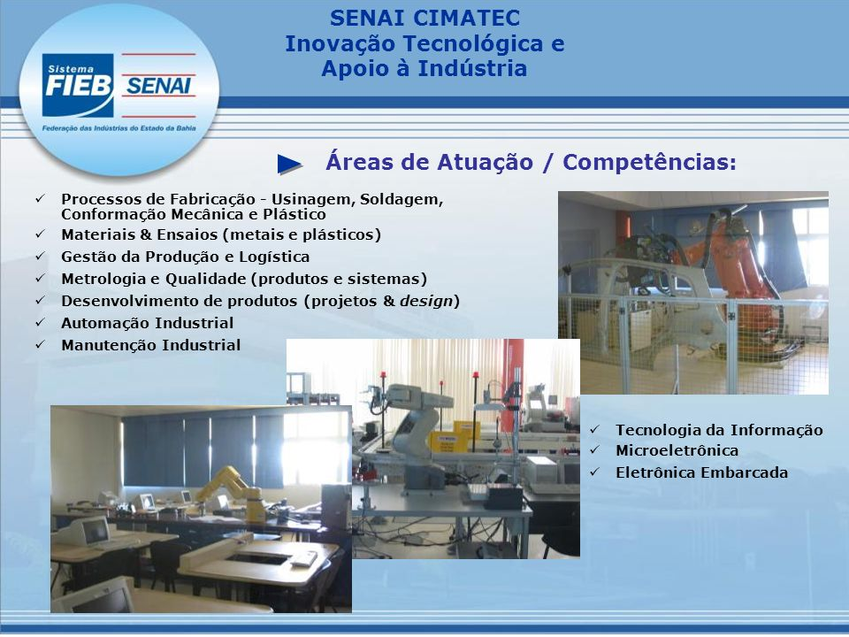 Áreas de Atuação / Competências: