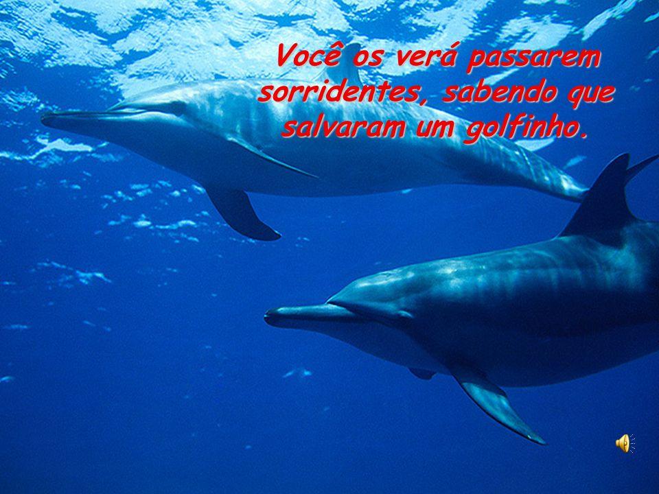 Você os verá passarem sorridentes, sabendo que salvaram um golfinho.