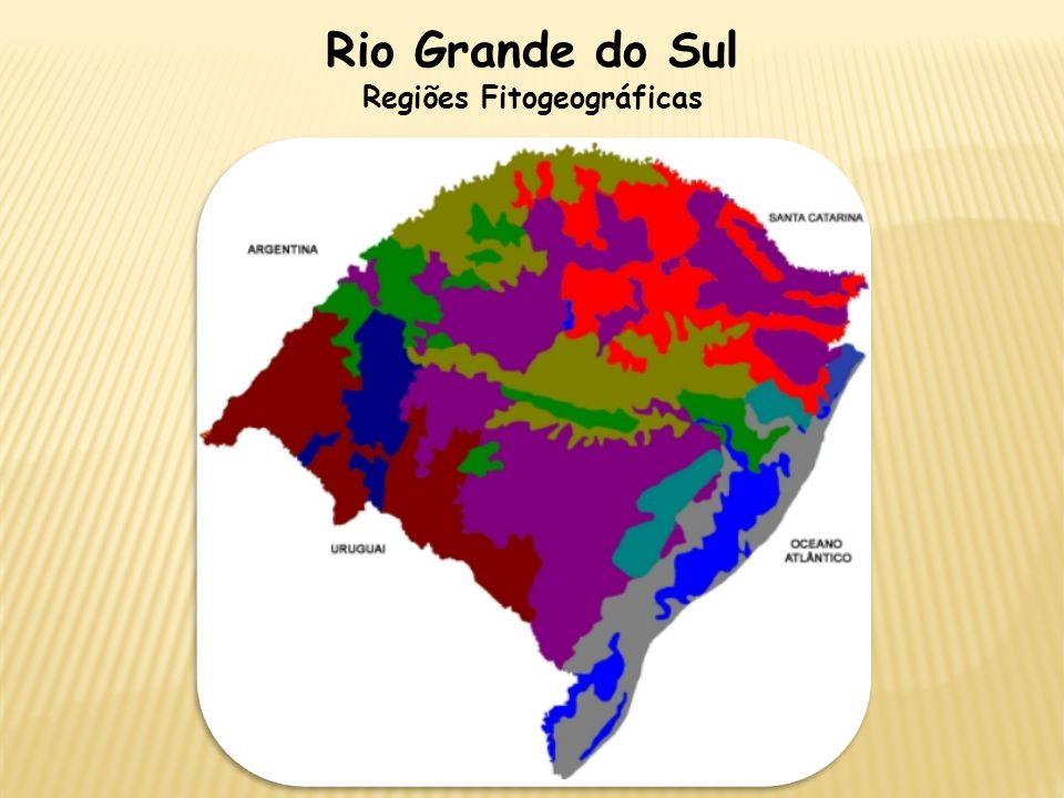 Regiões Fitogeográficas