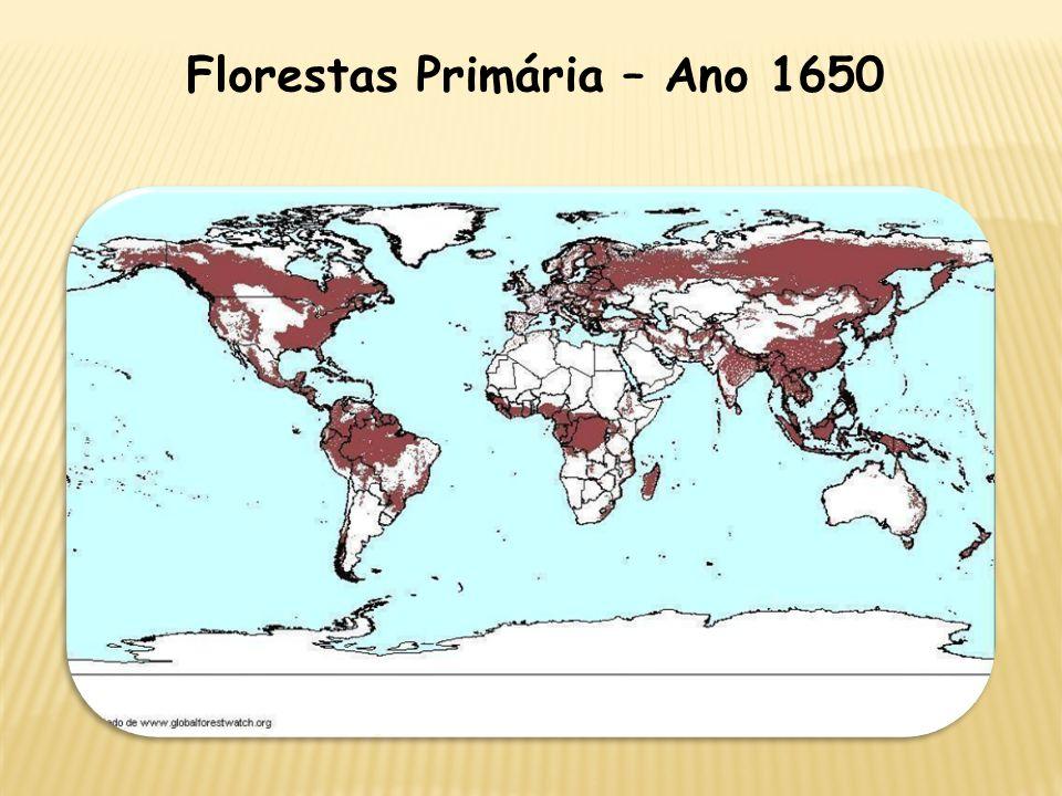 Florestas Primária – Ano 1650