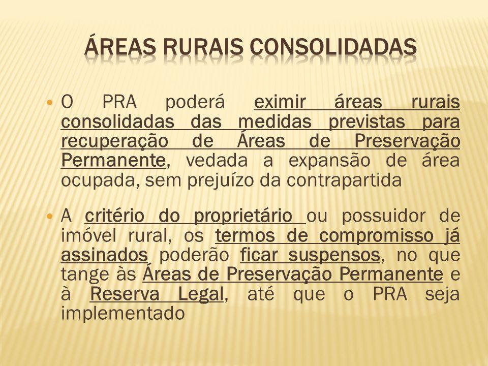 Áreas rurais consolidadas