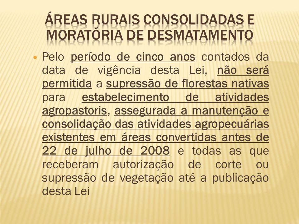 Áreas rurais consolidadas e moratória de desmatamento