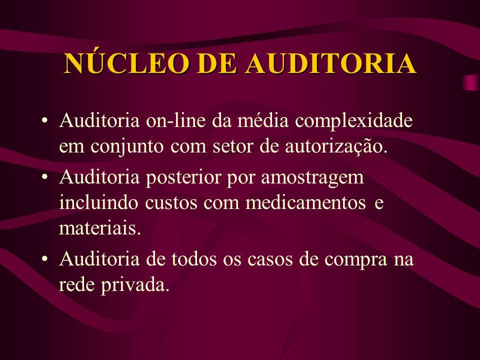 NÚCLEO DE AUDITORIA Auditoria on-line da média complexidade em conjunto com setor de autorização.