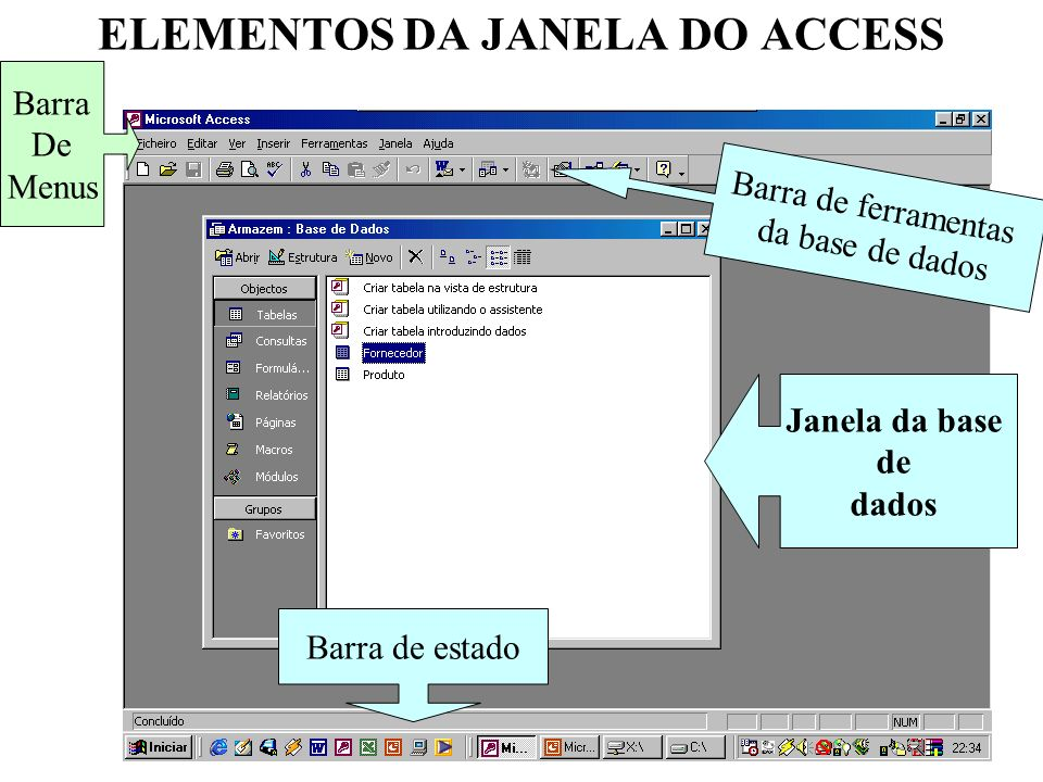 ELEMENTOS DA JANELA DO ACCESS