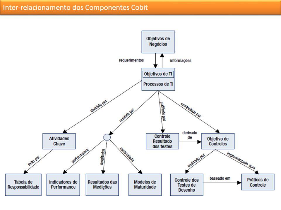 Inter-relacionamento dos Componentes Cobit