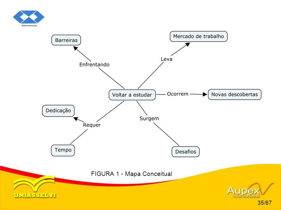 FIGURA 1 - Mapa Conceitual