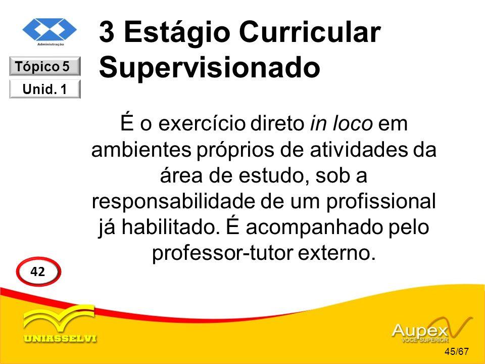 3 Estágio Curricular Supervisionado