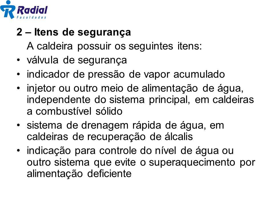 2 – Itens de segurança A caldeira possuir os seguintes itens: válvula de segurança. indicador de pressão de vapor acumulado.
