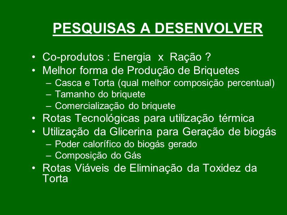 PESQUISAS A DESENVOLVER