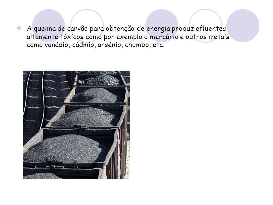 A queima de carvão para obtenção de energia produz efluentes altamente tóxicos como por exemplo o mercúrio e outros metais como vanádio, cádmio, arsénio, chumbo, etc.