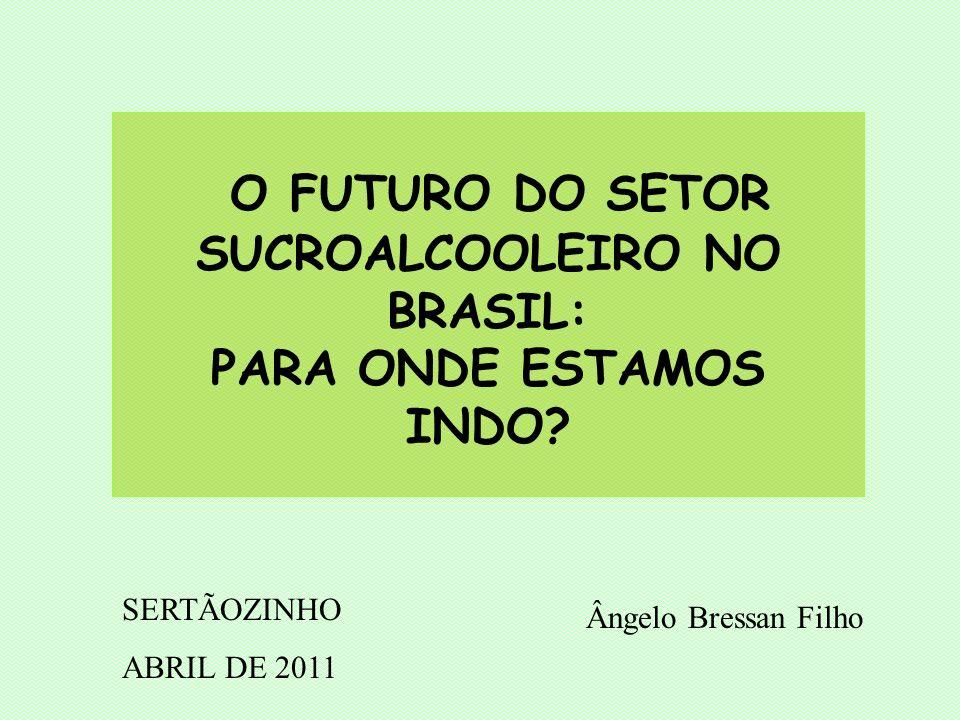 O FUTURO DO SETOR SUCROALCOOLEIRO NO BRASIL: PARA ONDE ESTAMOS INDO