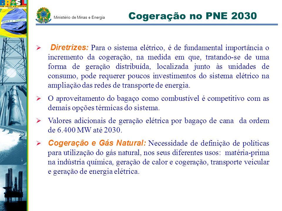 Cogeração no PNE 2030 Ministério de Minas e Energia.