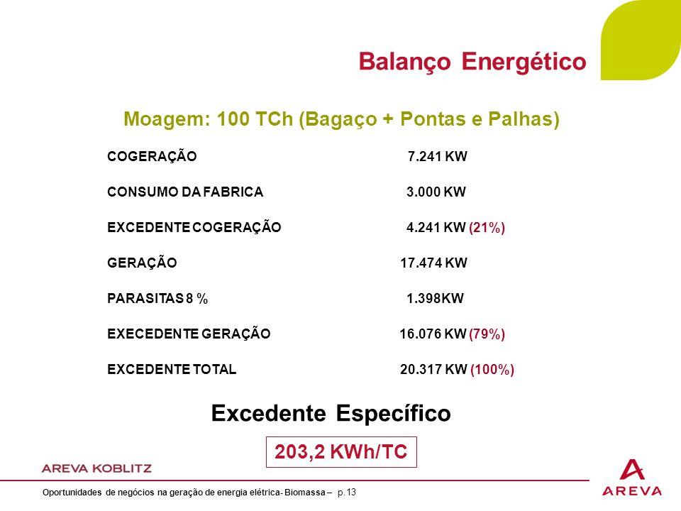 Balanço Energético Excedente Específico