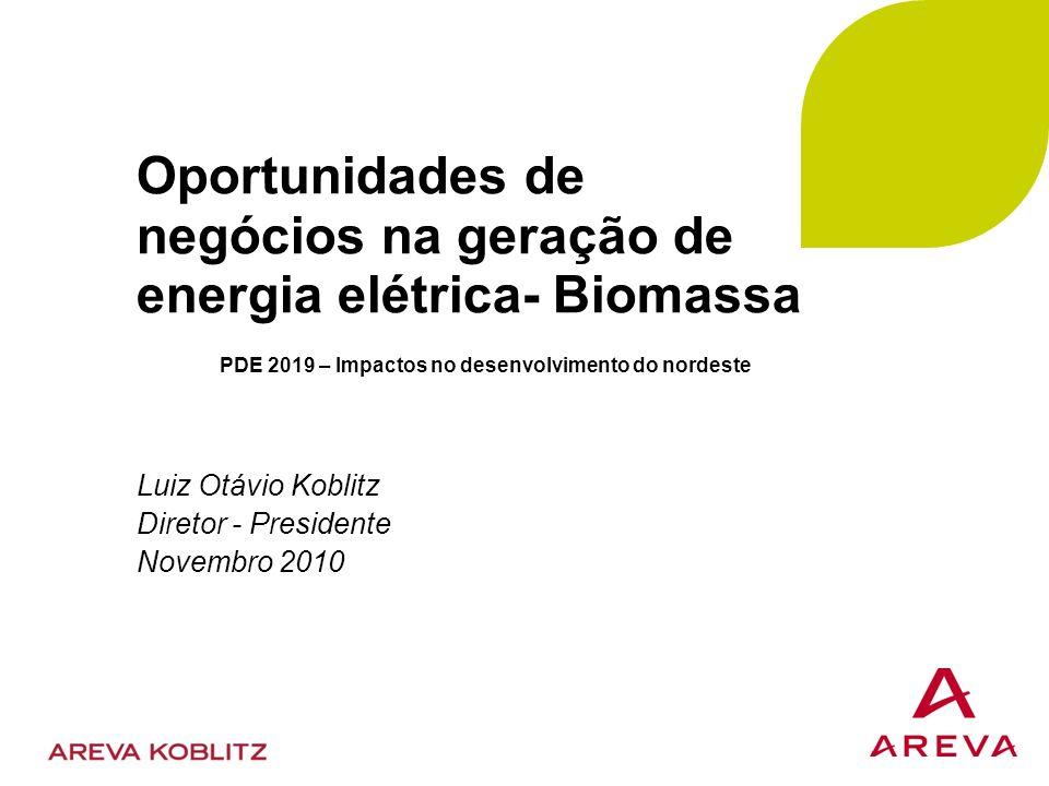 Oportunidades de negócios na geração de energia elétrica- Biomassa