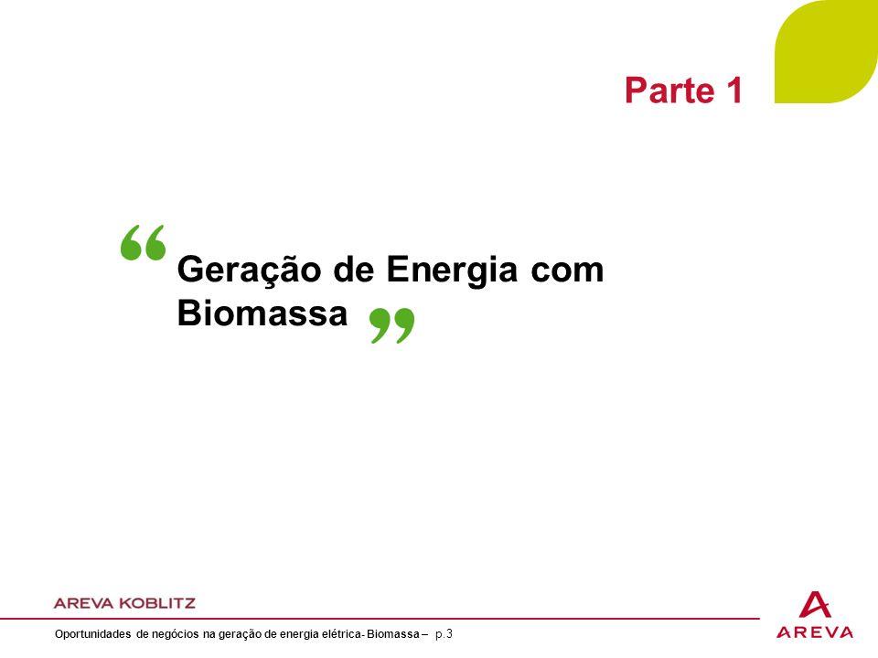 Geração de Energia com Biomassa