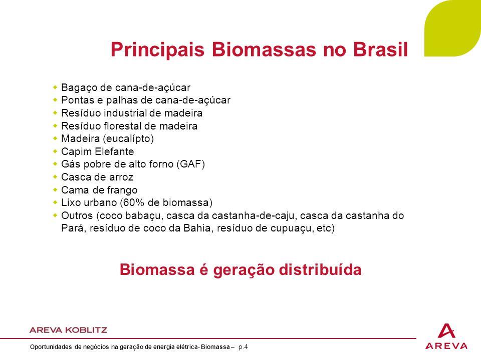 Principais Biomassas no Brasil