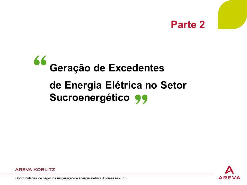 de Energia Elétrica no Setor Sucroenergético