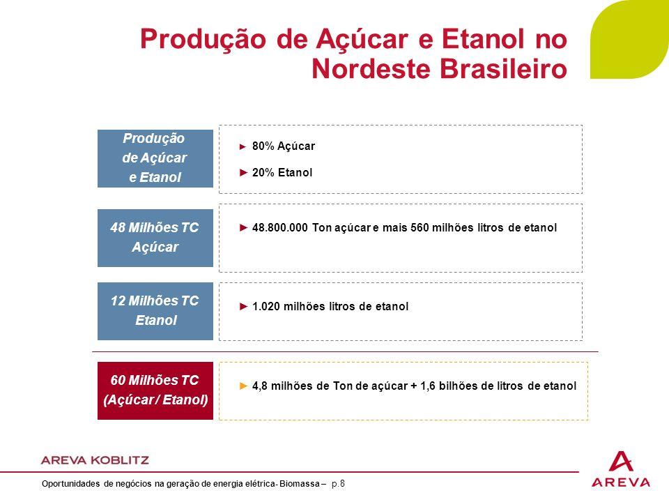 Produção de Açúcar e Etanol no Nordeste Brasileiro