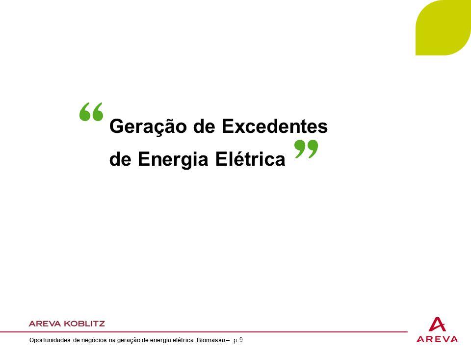 Geração de Excedentes de Energia Elétrica
