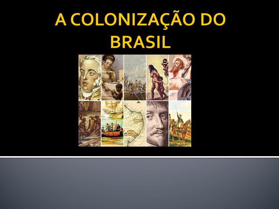 A COLONIZAÇÃO DO BRASIL
