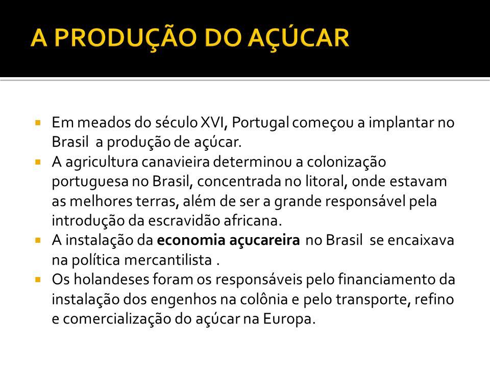 A PRODUÇÃO DO AÇÚCAR Em meados do século XVI, Portugal começou a implantar no Brasil a produção de açúcar.