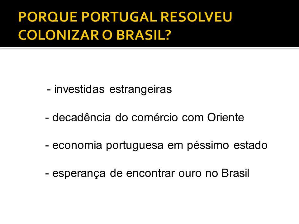 PORQUE PORTUGAL RESOLVEU COLONIZAR O BRASIL